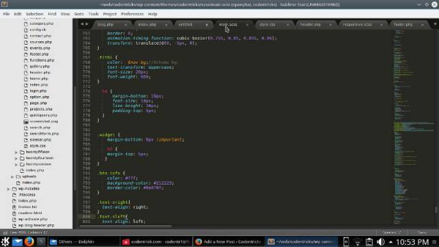Best Text Editor / IDE on Ubuntu, Linux Mint